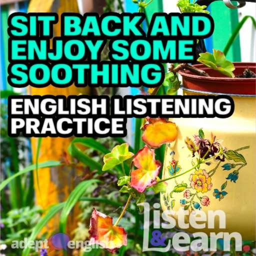 Sit Back And Enjoy Some Soothing English Listening Practice Ep 429