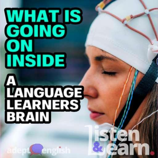 What Is Going On Inside A Language Learners Brain Ep 431