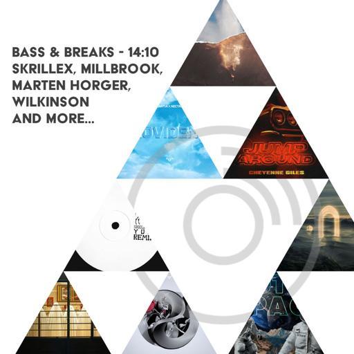 14:10 - Skrillex, Millbrook, Marten Horger, Wilkinson and more...
