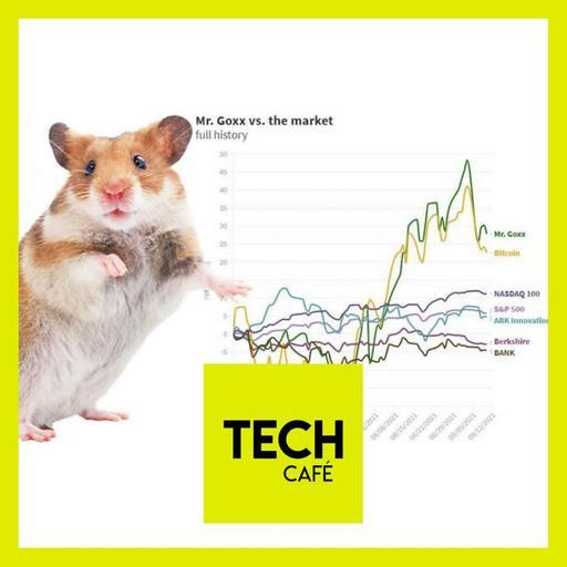 Cryptos : le hamster trader ! 💰🐹💰