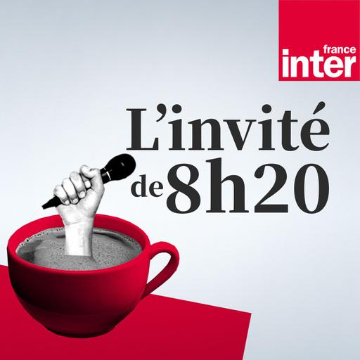 """""""Le danger, c'est de muséifier la langue française !"""" : la grammaire, avec Anne Abeillé et Julie Neveux"""