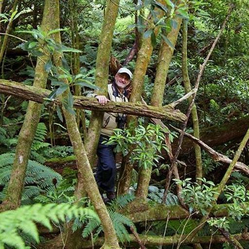 O USO DOS ANIMAIS NAS ACTIVIDADES HUMANAS Pelo Ecologista Vegetal Prof Eduardo Dias