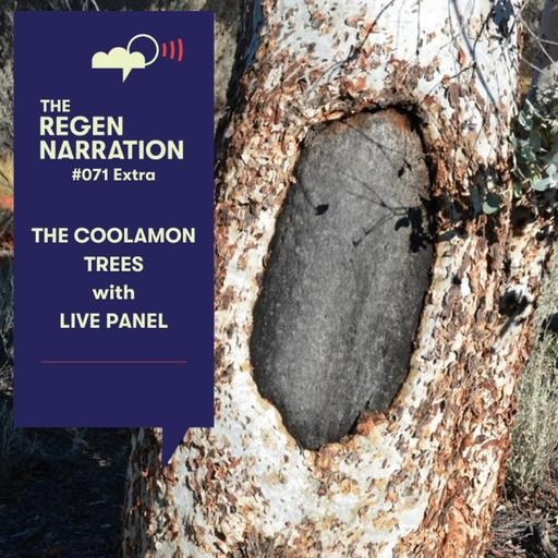 71 Extra. The Coolamon Trees: Changing law at its core, with live panel