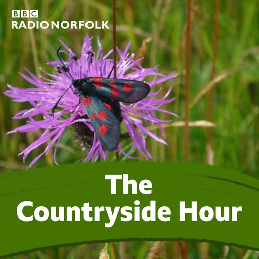 Countryside Extra: Kate Brewster sits in