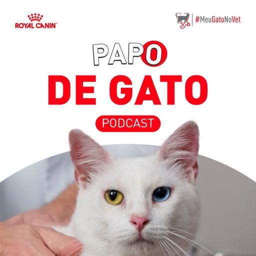 Papo de Gato