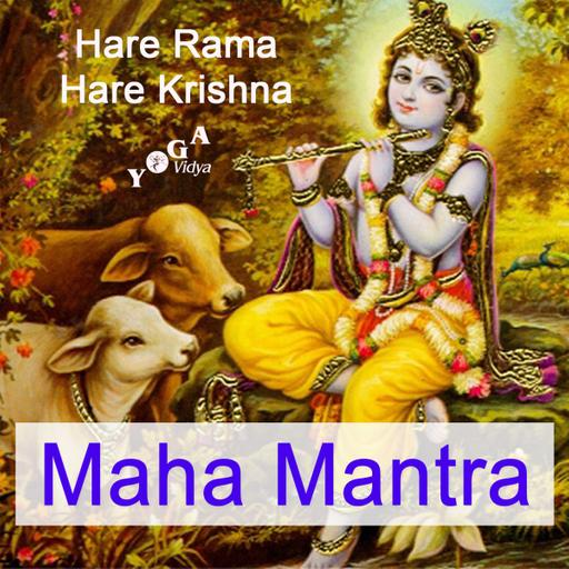Mahamantra mit Swami Gurusharanananda und Freunden