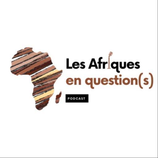 Les Afriques en Question(s)
