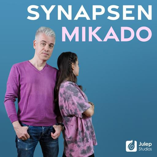 Mittermeiers Synapsen Mikado - Gespräche mit einer 13-Jährigen