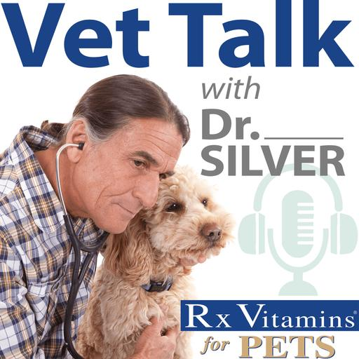 Vet Talk with Dr. Silver